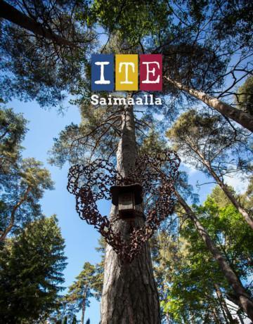 ITE Saimaalla -kirjan kansi, taidelinnunpönttö puussa